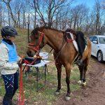 Horse at Radio Tower - Mark WA4KFZ's operating position